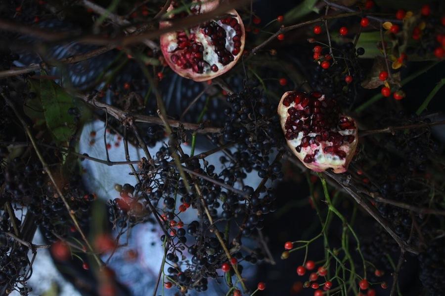 http://sophiamorenobunge.com/files/gimgs/28_27smb-for-emily-thompson-flowers-pomegranate--grape-vine.jpg
