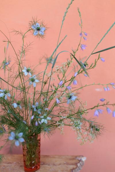 http://sophiamorenobunge.com/files/gimgs/28_img3824-campanula-rapunculus-aka-rampian-bellflower-nigella-oats-and-whipsy-white-flower-do-not-know.jpg